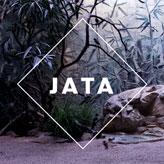 Musikmaschine-Kassettendeck-JATA-Jacob and teh appleblossom-knowsum-nelson--Staatstheater Mainz