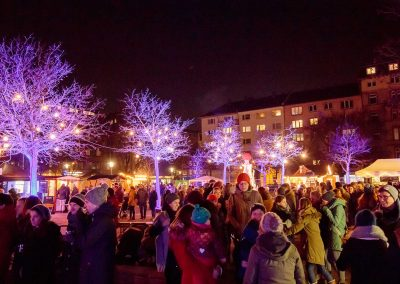 Mainzer Wintermarkt